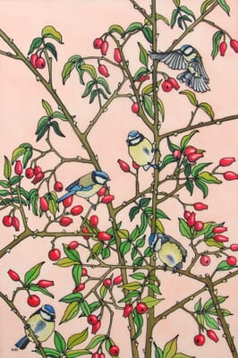 All of a Twitter - Blue Tits and Rosehips