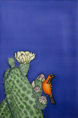 A Prickly Perch - Orange Oriole and Cactus