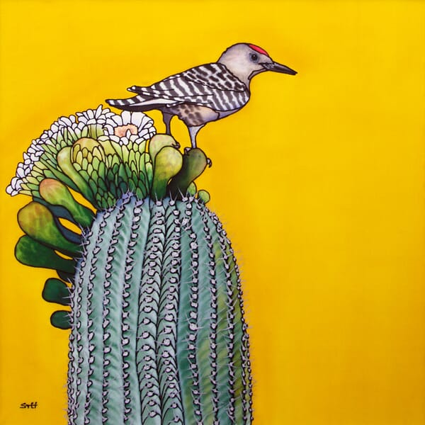 Bed of Nails - Gila Woodpecker and Cactus