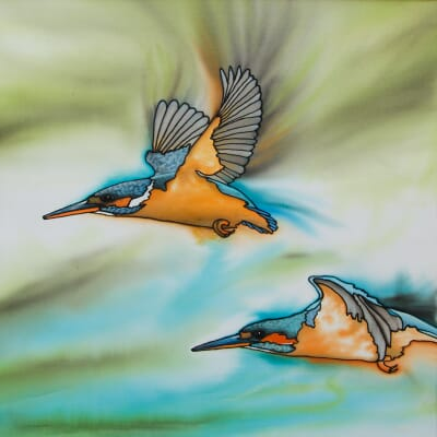 A Flash of Blue - Kingfishers