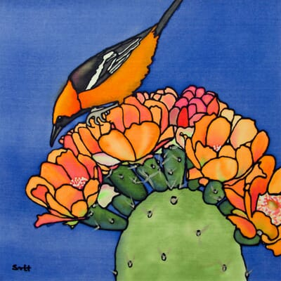 Oriole and Cactus III