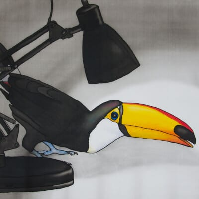Caught in the Act - Toucan in the Spotlight