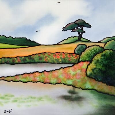 The Lone Pine, Priddy Ponds, Mendips