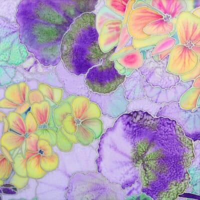 Pastel Pelargoniums
