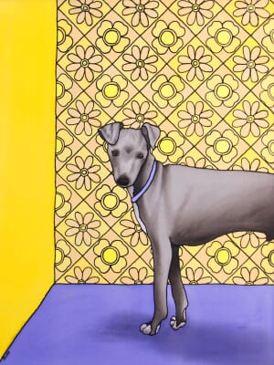 The Small Italian (Greyhound)